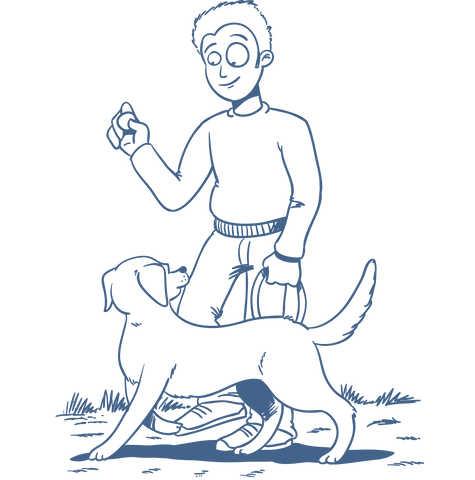 Intensivtraining für Hundetrainer