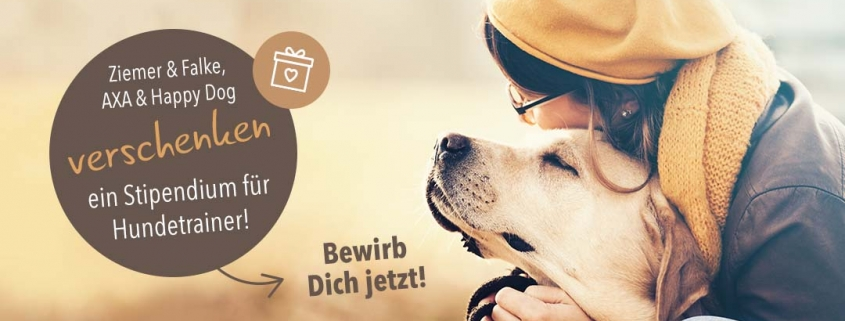 Ausbildungsstipendium für Hundetrainer