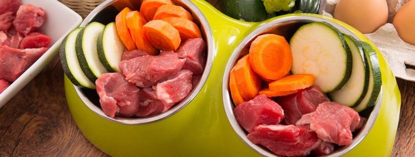 B.A.R.F. Hundenapf gefüllt mit rohem Fleisch und Gemüse