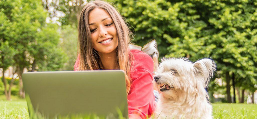 Digitale Lernprodukte zur Vorbereitung auf die Hundetrainer-Prüfung