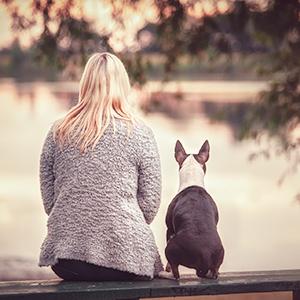 Dein Hund ist so, wie Du ihn siehst - Mentaltraining im Hundetraining mit Emanuel Beer