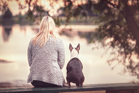 Emanuel Beer bei Ziemer & Falke: Dein Hund ist so, wie Du ihn siehst