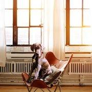 Seminar: Forschung trifft Hund mit Kate Kitchenham in Großenkneten