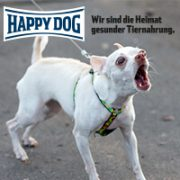 Happy-Dog-Profiseminar-Leinenaggression