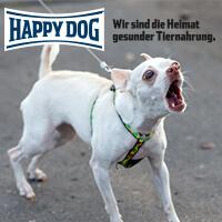 Happy-Dog-Profiseminar-Leinenaggression