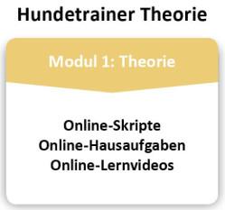 Hundetrainer-Theorie-Infografik
