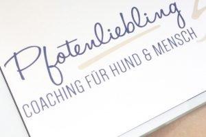 Hundetrainer werden - Lisas Blog