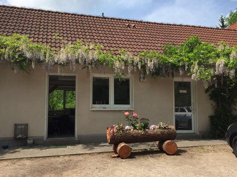 hundetrainerausbildung-recklinghausen-2