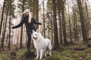 Hundetrainer Blog Tagebuch
