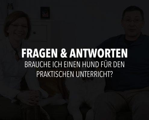 Infofilm-Frage-16
