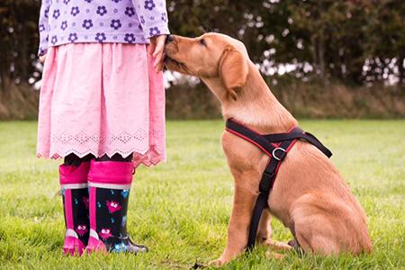Kind und Hund - ein Workshop mit Tina Lau