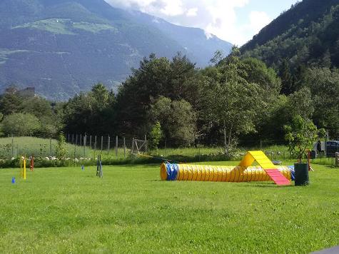 Hundeplatz am Standort Latsch in Südtirol (Italien)