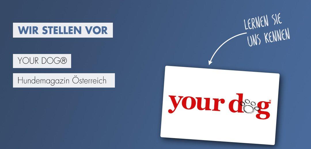 your dog Hundemagazin Kooperation mit Ziemer & Falke