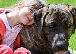 Was Kinder lernen: tiergestützte Arbeit mit Hunden-mit Dirk Wagner