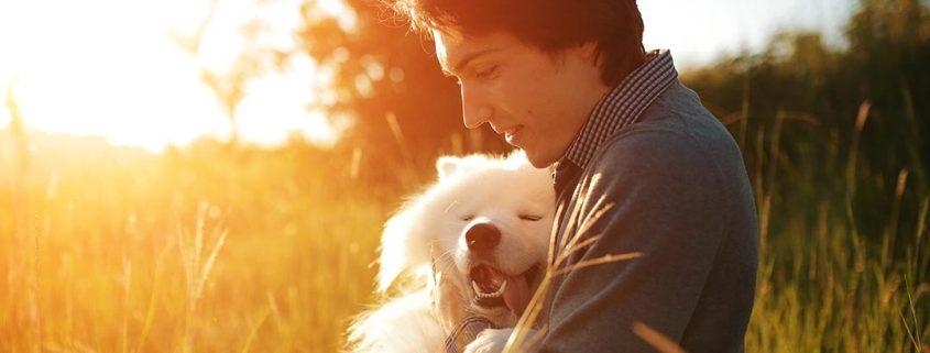 Mann sitzt zusammen mit seinem Hund draußen in der Abendsonne