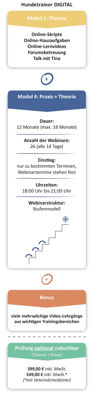 ausbildung-infografik-hundetrainer-digital