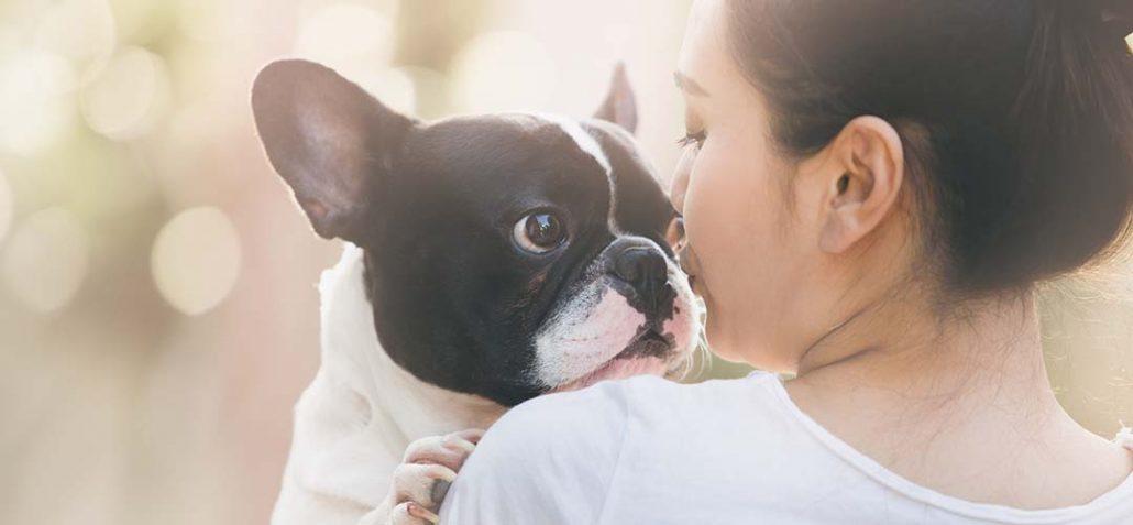 Frau hält liebevoll eine frz. Bulldoge in ihren Armen
