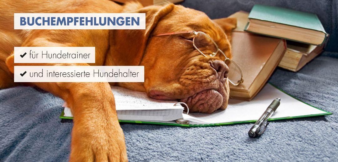 Buchempfehlungen für jeden Hundetrainer
