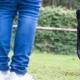 Feinziel im Hundetraining - Training mit Hunden auf dem Übungsplatz
