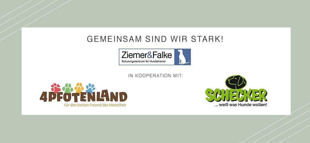 Spendenaktion in Kooperation - Gemeinsam sind wir stark