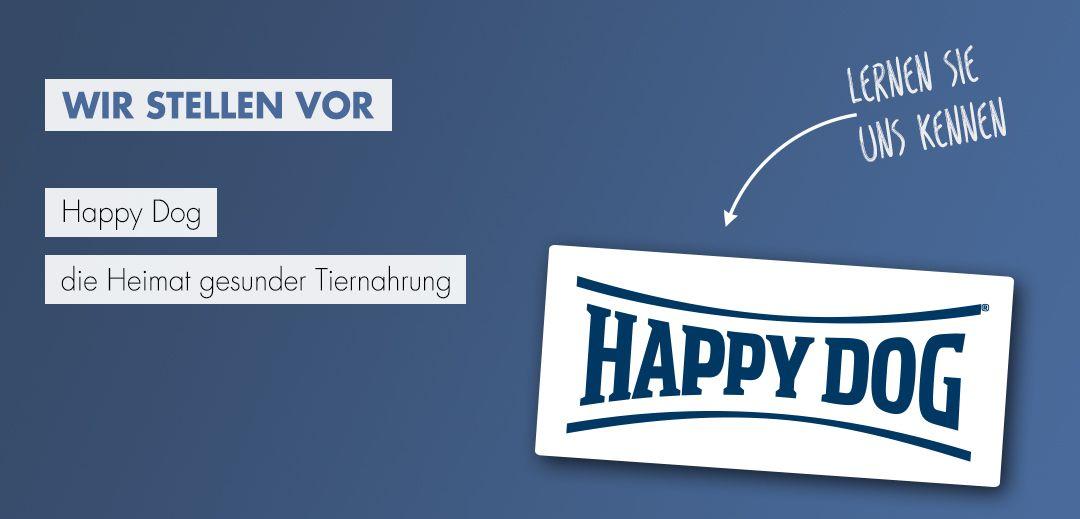 Happy Dog Steckbrief - Startbild