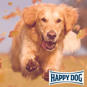 Happy Dog Profi-Event 2019