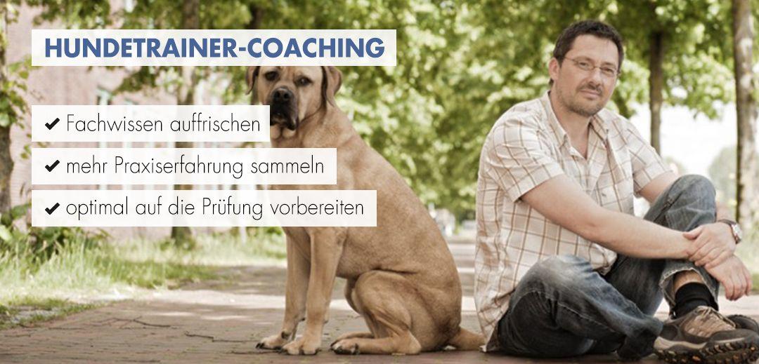 Hundetrainer-Coaching Startbild