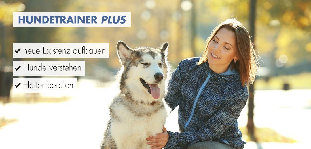 Hundetrainer plus Ausbildung Startbild