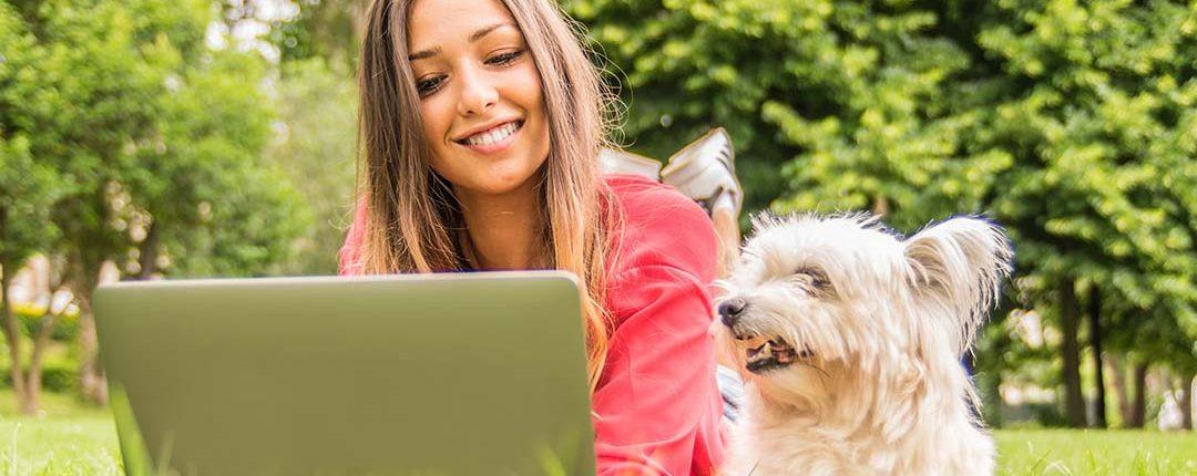 Junge Frau liegt draußen mit Hund im Gras vor einem Laptop