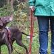Hundetrainerin mit Hund und Jacke von Owney