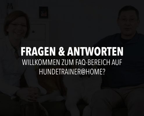 infofilm-frage-24