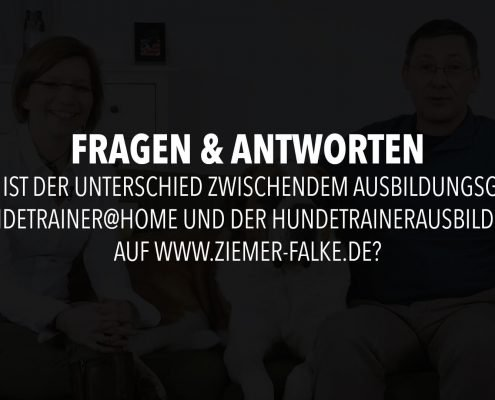 infofilm-frage-3