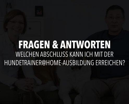 infofilm-frage-4