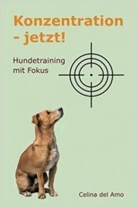 Konzentration - jetzt!: Hundetraining mit Fokus Buchcover