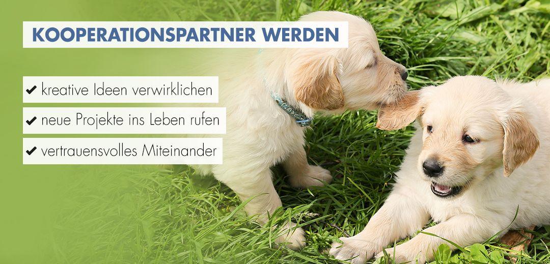 Kooperationspartner von Ziemer & Falke werden