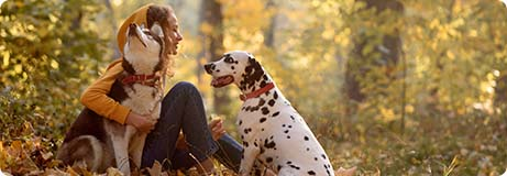 Coach für Waldbaden mit Hund bei Ziemer & Falke