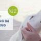mentaltraining-im-hundetraining-weiterbildung-beitragsbild