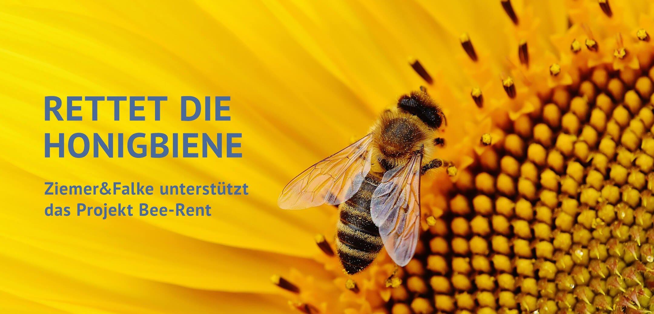 Projekt Honigbiene