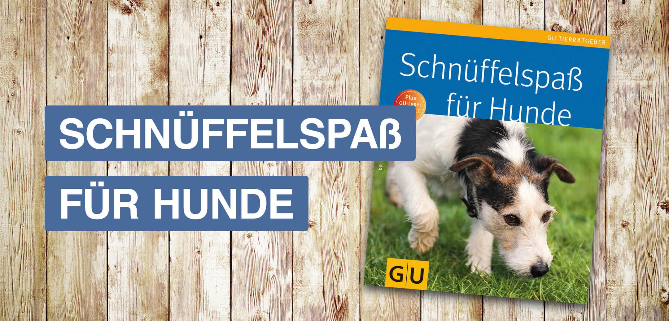 Schnüffelspaß für Hunde Informationsseite Startbild
