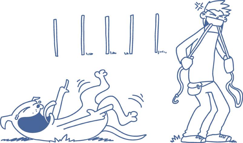 3-stündiges Intensivtraining für Hundetrainer