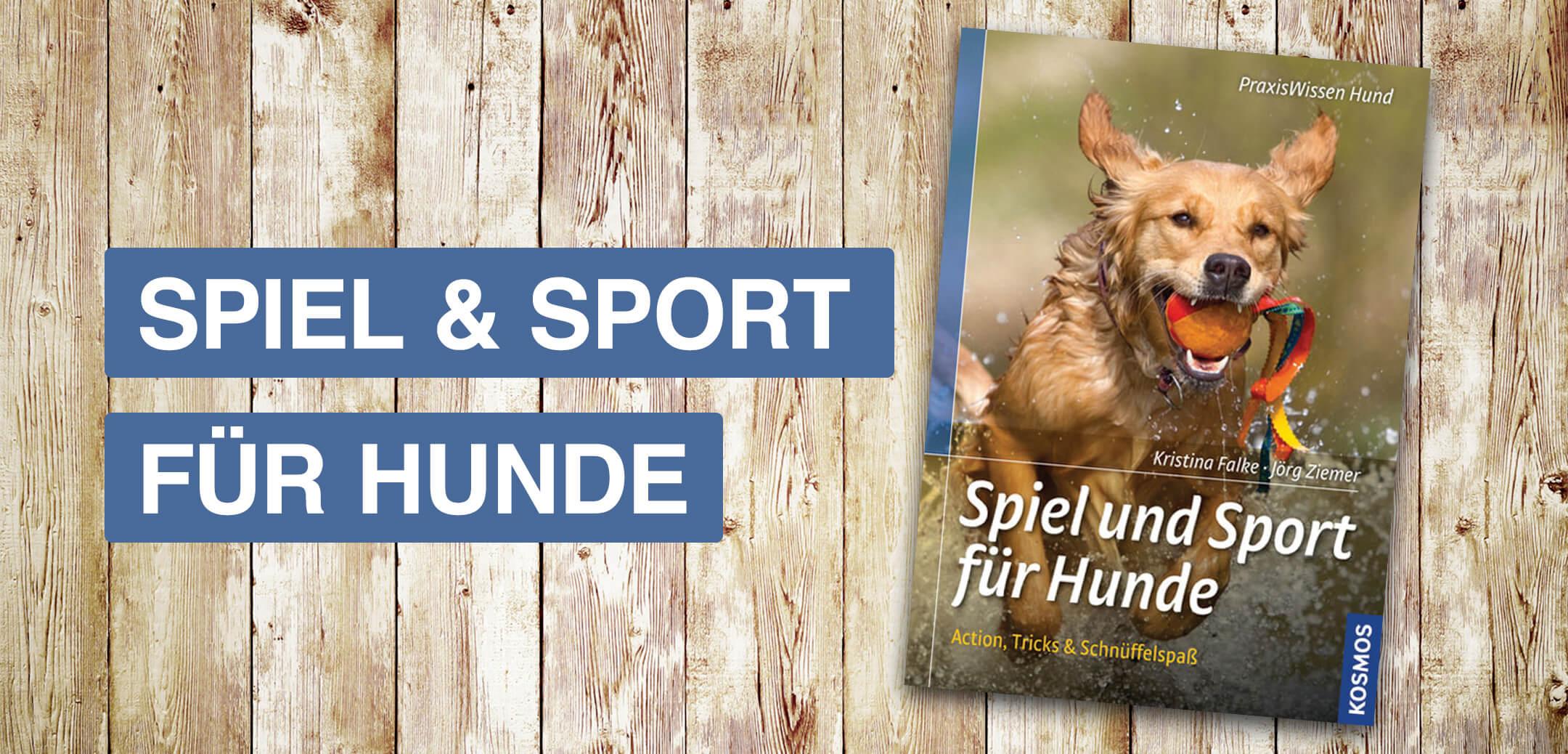 Spiel und Sport für Hunde Informationsseite Startbild