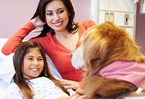 therapie-und-besuchshund-ausbildung