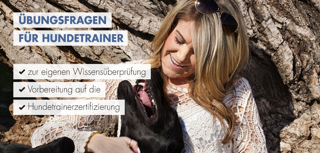 Übungsfragen für Hundetrainer Startbild