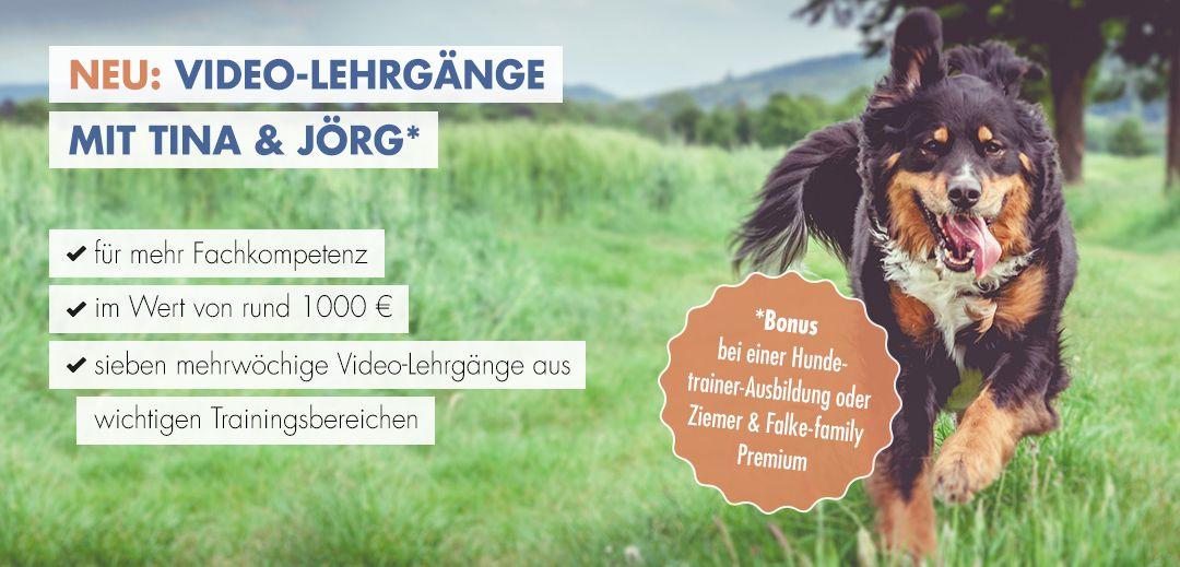 Videolehrgänge mit Tina & Jörg jetzt zu jeder Hundetrainerausbildung