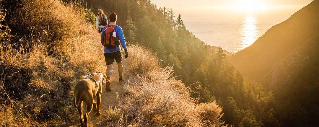 Mensch und Hund wandern mit Gepäck auf alpinem Wanderweg