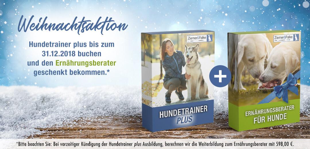 Weihnachtsaktion Hundetrainer plus + Ernährungsberater für Hunde