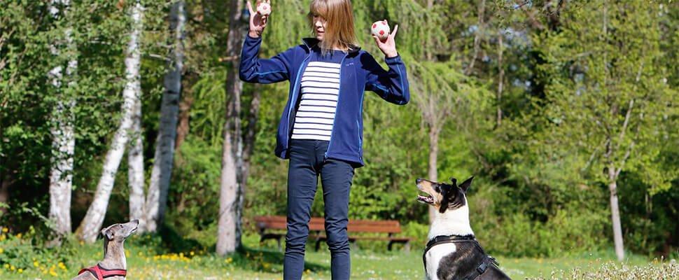Uschis Blog Hundetrainer
