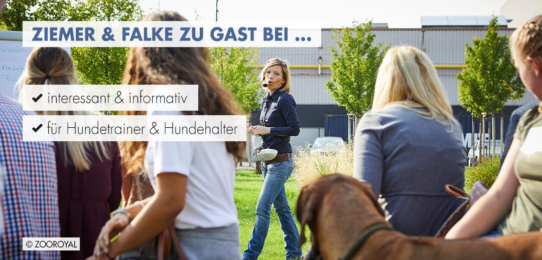Ziemer & Falke zu Gast bei...
